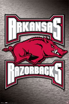 Razorback is an Americanism, loosely applied to any type of feral pig or wild boar in North America.