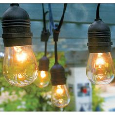 Found it at Wayfair - Vintage Commercial Patio String Lights with 12 Edison Light Bulbs and Hanging Sockets