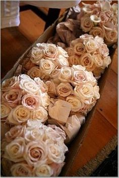 Bridesmaids bouquets--talea roses these are the same bouquets I used at my wedding