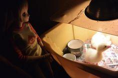 Mirai Suenaga Smart Doll by nightroan