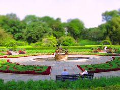Francês Jardim camas de baixo da flor em torno da fonte central de idéias do projeto da paisagem