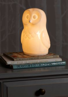 white owl image