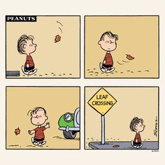Wednesday with Linus.