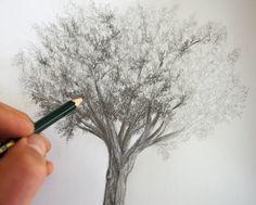 dessiner un arbre au crayon en clair obscur