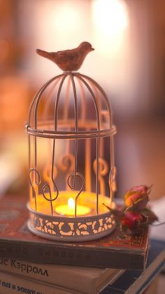 Image uploaded by 𝐆𝐄𝐘𝐀 𝐒𝐇𝐕𝐄𝐂𝐎𝐕𝐀 👣. Find images and videos about fashion, cute and beautiful on We Heart It - the app to get lost in what you love. Light Em Up, Romantic Images, Bird Cage, Sweet Home, Pink, Table Lamp, Pastel, Candles, Lighting