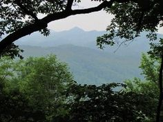 Get a beautiful view of Cades Cove by hiking the Lumber Ridge Trail in Townsend, TN. The Lumber Ridge Trail is the perfect hike if you're looking for a little peace, quiet and solitude.