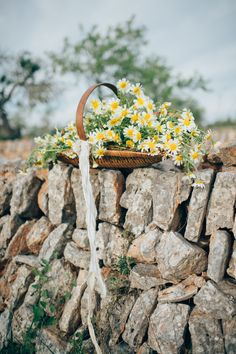 Rustic daisy inspiration on Mallorca | A Very beloved Wedding | A Very Beloved Bloom | Photo: Manuela Kalupar #daisies #mallorcastones #stilllife #propstylingelisabethcardich
