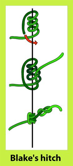 File:Blacke's hitch knot.png