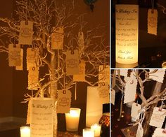 Guest Book Alternative, Wedding Wishing Tree - Beautiful and Unique Looking for an innovative & unique way to have a sign in book for your Wedding? Consider a Wedding Wishing Tree. A Wedding W Decoration Table, Reception Decorations, Wedding Centerpieces, Tree Centerpieces, Centerpiece Ideas, Reception Ideas, 50th Wedding Anniversary, Anniversary Parties, Anniversary Ideas