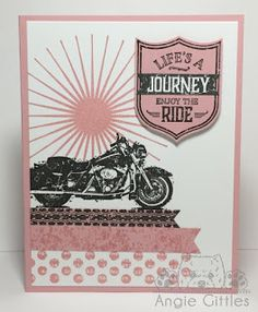 Paper, Paws, etc.: One Wild Ride