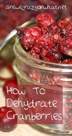 To Dehydrate Cranberries Step by step instructions for dehydrating cranberries. Plus two methods tested.Step by step instructions for dehydrating cranberries. Plus two methods tested. Canning Recipes, Raw Food Recipes, Healthy Recipes, Tea Recipes, Recipies, Canned Food Storage, Dehydrated Food, Dehydrator Recipes, Diy Food