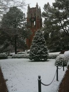 University Of Richmond, Outdoor, Outdoors, Outdoor Games, Outdoor Life