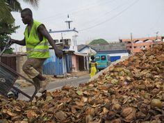 Coconut Waste Collector