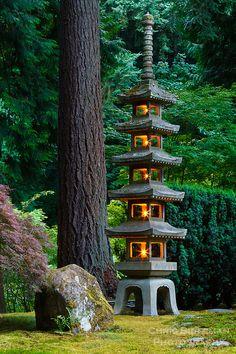 Japanese Garden Lighting, Japanese Garden Lanterns, Japanese Garden Backyard, Japanese Garden Landscape, Small Japanese Garden, Portland Japanese Garden, Japan Garden, Japanese Garden Design, Japanese Flowers