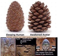 Ancient Aliens, Ancient Egypt, Ancient History, Pineal Gland, Occult Art, Sumerian, Ancient Mysteries, Ancient Civilizations, Sacred Geometry