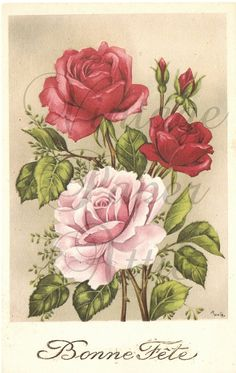 Pink and Red Roses French Postcard Post Card by VintagePaperAttic