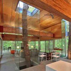 .træ i midten af huset