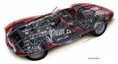1952 Alfa Romeo Disco Volante cutaway by Makoto Ouchi. Sports Car Racing, Sport Cars, Race Cars, Cutaway, Autocad, Alfa Alfa, Alfa Romeo Cars, Cars Series, Car Posters