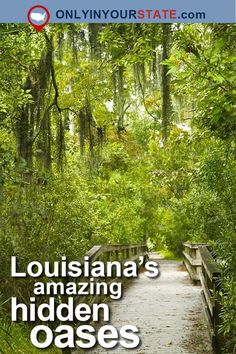 These 8 Hiking Spots In Louisiana Are Completely Out Of This World