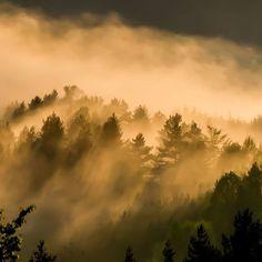 """Polubienia: 40, komentarze: 4 – Hasające Zające (@hasajacezajace) na Instagramie: """"Clouds over the mountains. #hasajacezajace  #nofilterneeded  #nofilter  #mountains  #gory  #gorce…"""""""
