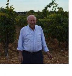 """""""Tinto Pesquera fue el primer vino español que puntúo Parker"""""""