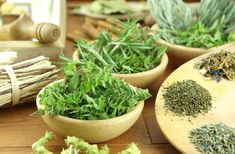Herbs and spices can not only make food taste better, they can bring health benefits to your meals. Here are three herbs that scientific studies have suggested to be beneficial. Cat Safe Plants, Cat Plants, Garden Plants, Balcony Garden, Herb Garden, Natural Honey, Natural Herbs, Herbal Medicine, Tempura