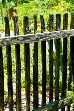 rustic fence... love-- love !!