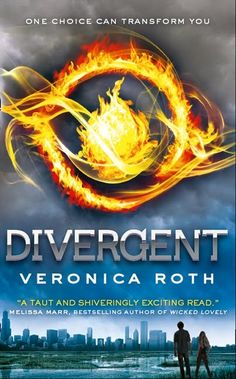 Better than Hunger Games. Amazing first book for this author.