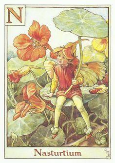 Nasturtium Fairy by Cicely Mary Barker by OLDBOOKSMAPSPRINTS