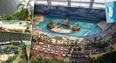 Skvelý zájazd do Tropical Islands pri Berlíne. Užite si pláže, lagúny, palmy, vodopády a dažďový prales v januári. Aquarium, Goldfish Bowl, Aquarium Fish Tank, Aquarius, Fish Tank