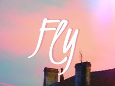 Fly by Loulou Darracq #graphism #photography #typography #art #lettering #design #digital #fly