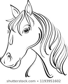 Similar Images, Stock Photos & Vectors of Vector silhouette of a horse's head - 645837871 Horse Head Drawing, Silhouette, Black And White Drawing, Stock Foto, Royalty Free Stock Photos, Horses, Drawings, Hilarious Texts, Silhouettes