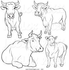 cows vector - Google Search