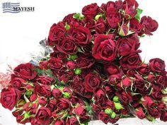 Rubicon red Spray Rose