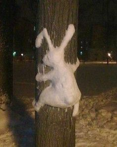 funny bunny freaky ways to make snow animals , I am amazed how it sticks to the tree hope christmas brings you all you wish for and thanks for following winter decoration ideas for backyards