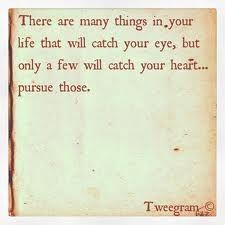 Pursuing.