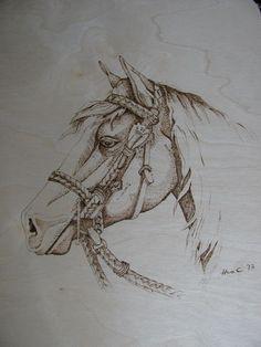 My first pyrography (Corby), horse burned on birchwood, pattern from L.Irish - Ma première pyrogravure (Corby), cheval brûlé sur planche de bouleau, patron de L.Irish