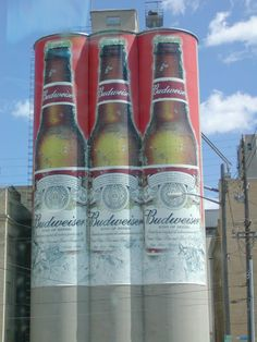 In my little town, I grew up believing that Bud was the King of Beers...  (Manitowoc Wisconsin)