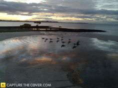 Cleveland Point #CaptureTheCover entry - by Barbra in Brisbane's Redland Bayside Region. Click to enter your photos!