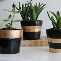 Update your decor with gold leaf! Follow this tutorial to make gold leaf striped planters.