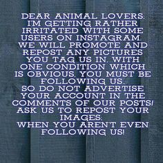 Going to repost this because clearly in 2016 nearly 2017 giving someone who's doing something nice for you respect isn't obvious lmao get off your high horse I can't deal with selfish uptight children on this app #Repost @cat_meowsc83  Dear Animal Lovers; I'm getting rather irritated with some users on Instagram.  We will promote and repost any pictures you tag us in with one condition which is obvious you must be following us.. So do not advertise your account in the comments of our…