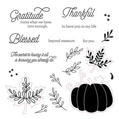 Celebrate everything you are thankful for with our beautiful September Stamp of the Month, Blessed Beyond Measure.     Each month you can p...