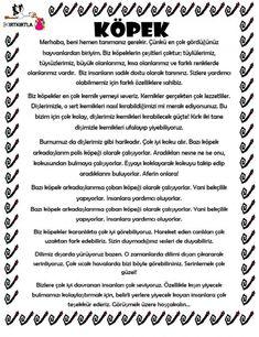Learn Turkish, Turkish Language, Lessons For Kids, Science For Kids, Stories For Kids, Kids Education, Kids Learning, Preschool, Classroom