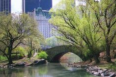 New York City - Central Park. Park In New York, Go To New York, New York City, Oh The Places You'll Go, Great Places, Beautiful Places, Horse Carriage Rides, Central Park Nyc, I Love Nyc