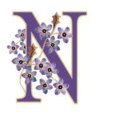 Alfabeto violeta con flores N