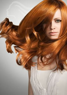 new style, take a example of wella www.shampoo.ch