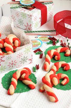 Candy Cane Shortbread Cookies | The Suburban Soapbox
