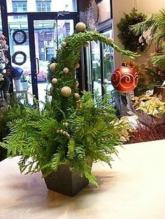A Grinch-style Christmas tree! WooHoo! What a delightful idea. Cedar branches all wrapped up with sparkly wire and a sparkly bobble on the end making it lean over. Billiant, simply brilliant. More details @ http://insideastudentshead.blogspot.com.