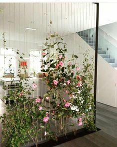 Green Wall Room Divider Ideas