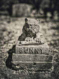 Pet Cemetery, Buddha, Statue, Pets, Sculptures, Animals And Pets, Sculpture